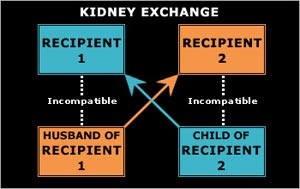 box diagram of kidney exchange of 2 recipients; R1 incompatible with husband but compatible with child of R2 and R2 incompatible with child but compatible with husband of R1