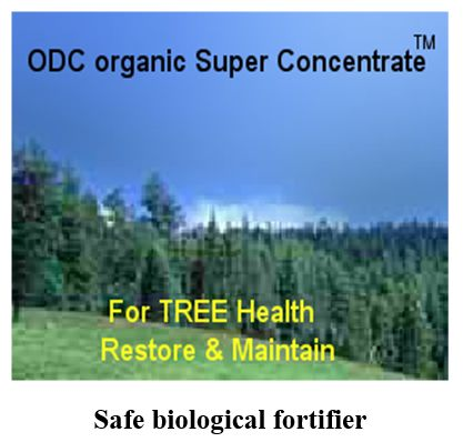° ODC organic Super Concentrate™